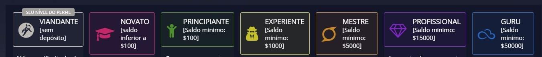 nivel de perfil pocket option